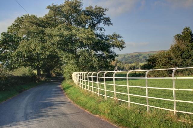 Iron Fence at Greenlane