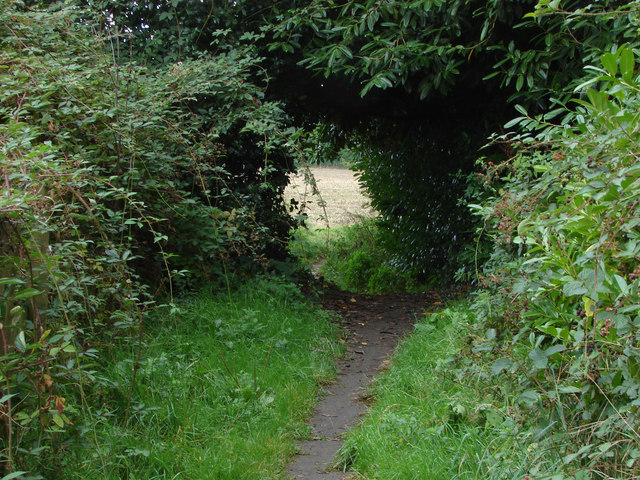 Footpath from Carters Hill