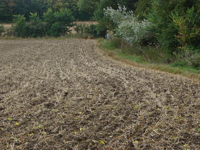 Ploughed field near Binfield