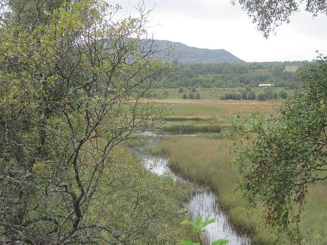 Marsh near Lynchat