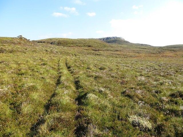 Quadbike tracks