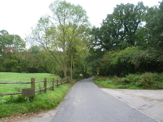 Broom Lane