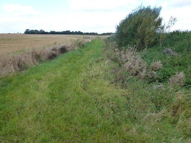 Footpath near Folly Farm, Doddington