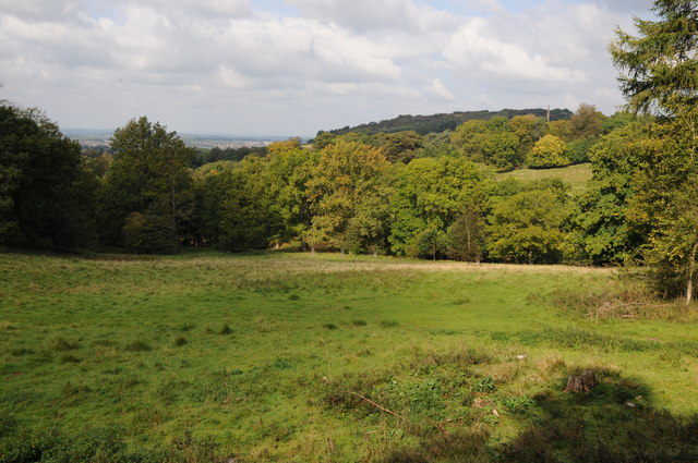 View to Wychbury Hill