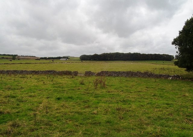 Fields near Hindlow Quarry