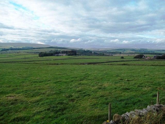 Pasture near Topleyhead Farm