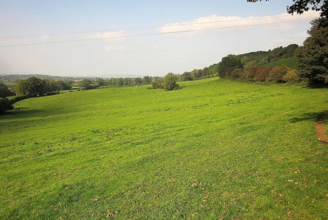 Pasture on the Cotswold Way