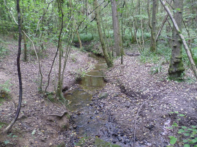 Stream in Sproud's Wood