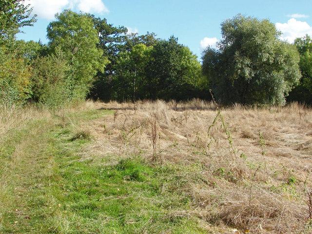 Triangular field by Wick's Green