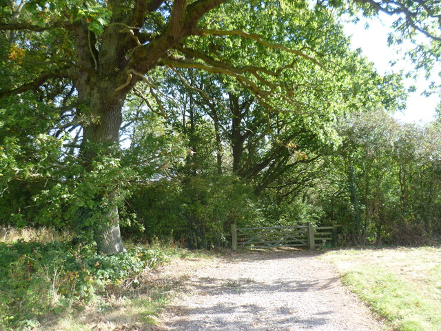 Footpath to Budd's Green