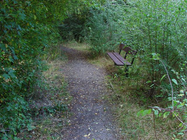 Seat, Wick's Green recreation ground