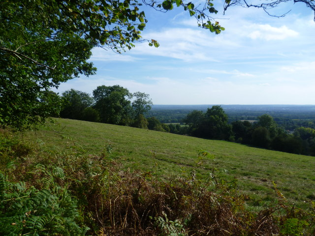 View from the Greensand Way at Carter's Hill