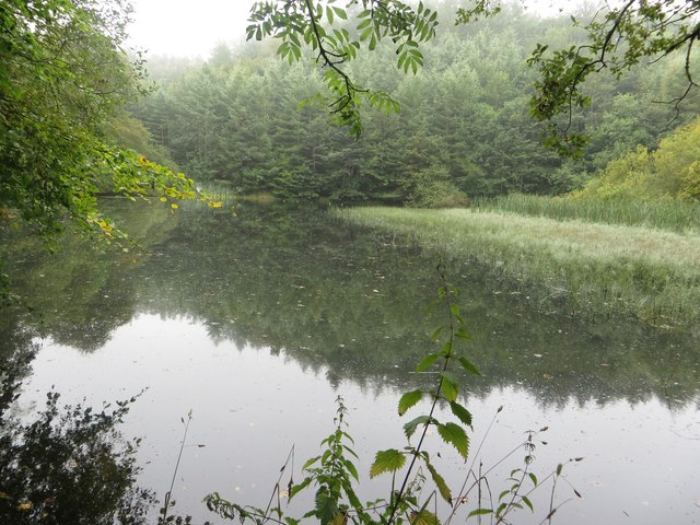 Mill Dam, Duns Castle Nature Reserve