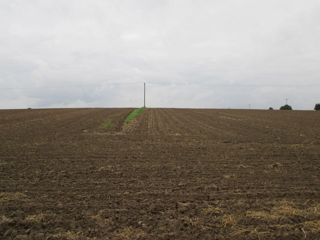 The  Leys  a  large  field  alongside  Atwick  Road