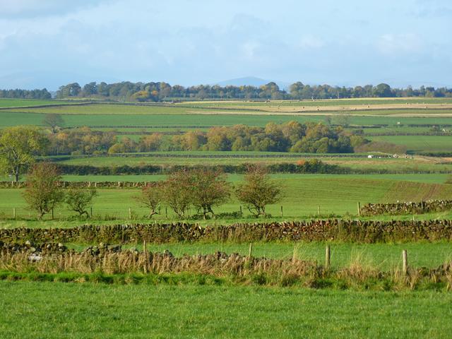 Farmland, Melmerby
