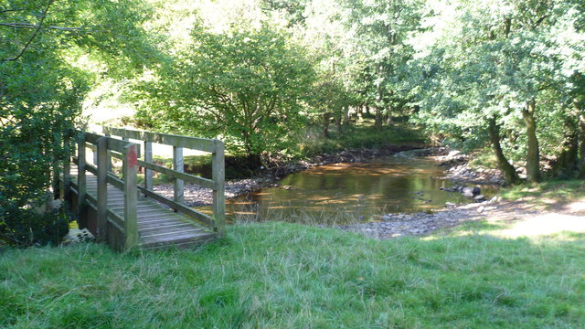 Footbridge in the Llanthony Valley
