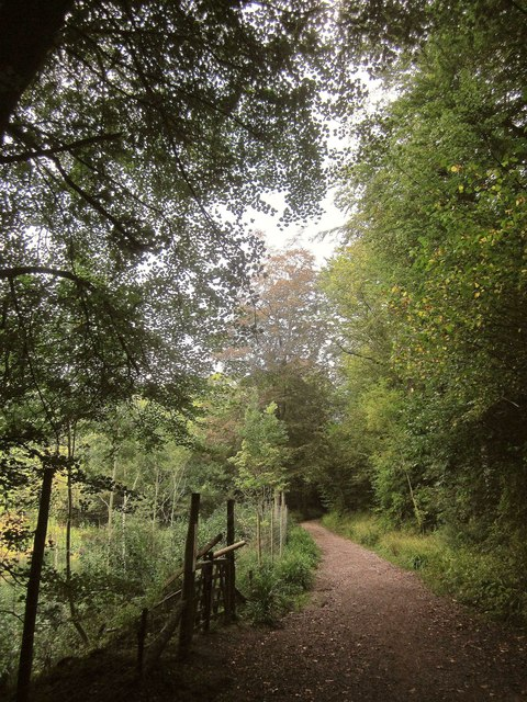 Track, Leigh Woods