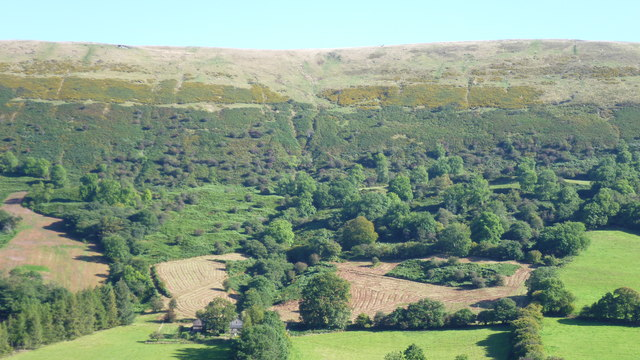 Hillside above the Llanthony Valley