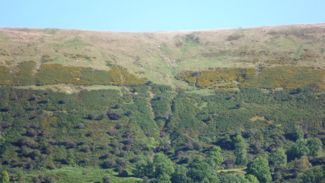 Hillside above the Llanthony Valley in autumn