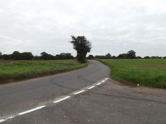 Common Road, Shelton