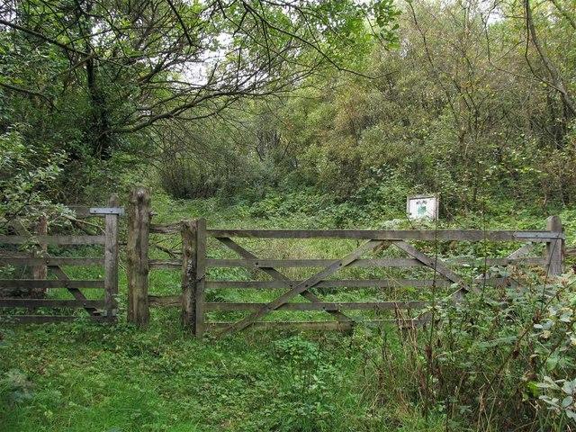 Information board and gate into Grasslands Trust, Mynydd Carmel