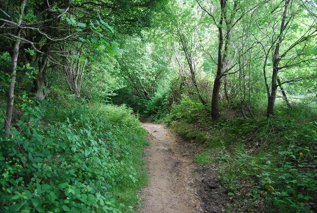Bridleway near Chartners Farm