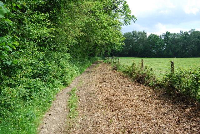 Bridleway to Hartfield