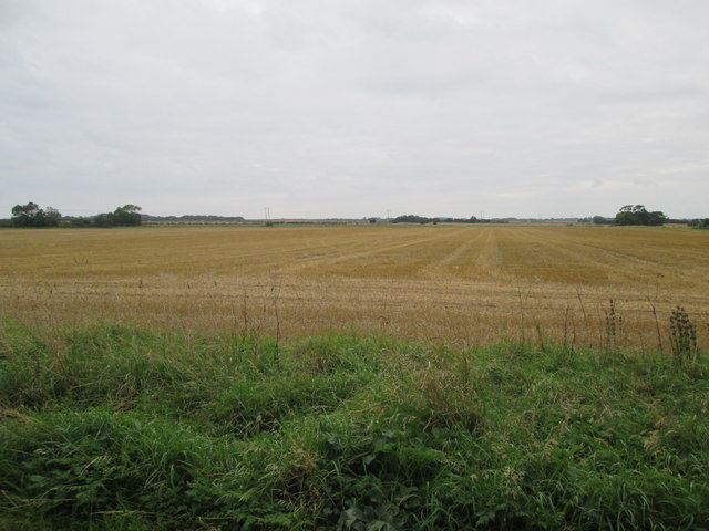 Over  fields  called  Hornsea  Closes
