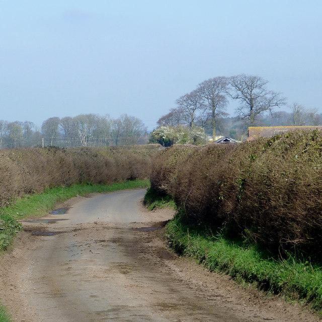 The lane to Stableford, Shropshire