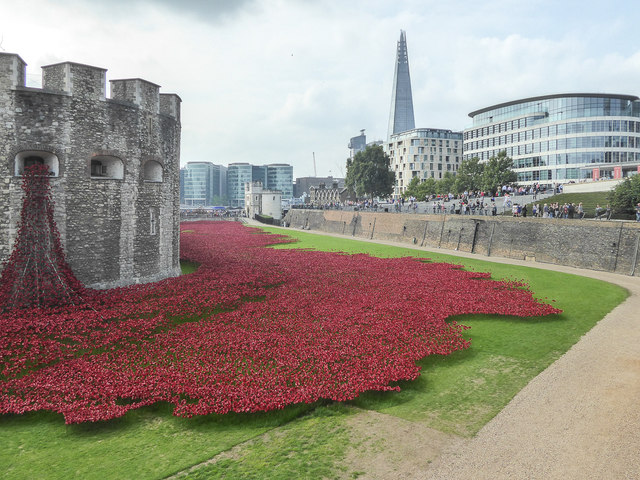 Poppies in the Moat