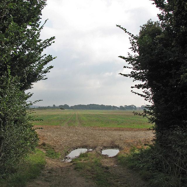 Towards Pampisford Wych