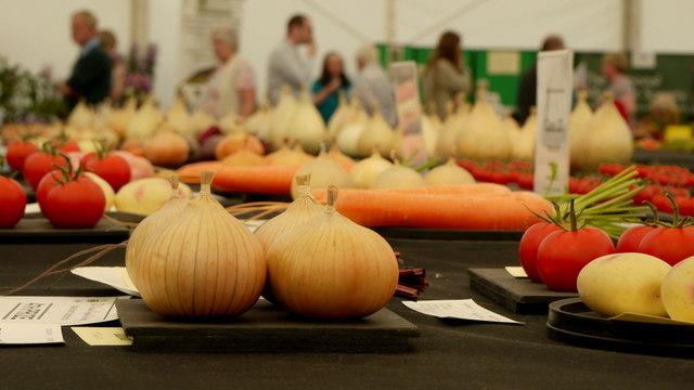 Malvern Autumn Show 2014, 12
