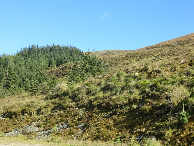 Slopes of Beinn Laoigh