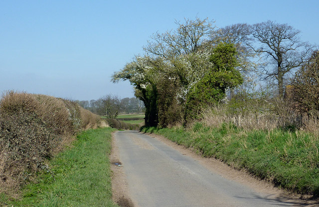 Lane by Cranmere north of Worfield, Shropshire