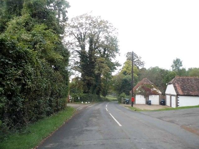 Spring Bottom Lane