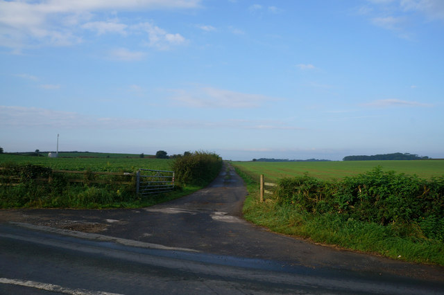 Farm Track off Station Road, Cattal