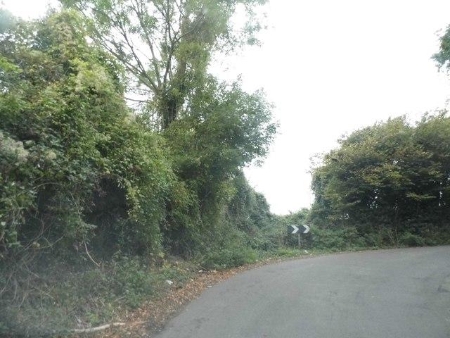 Bend on Hilltop Lane, Chaldon