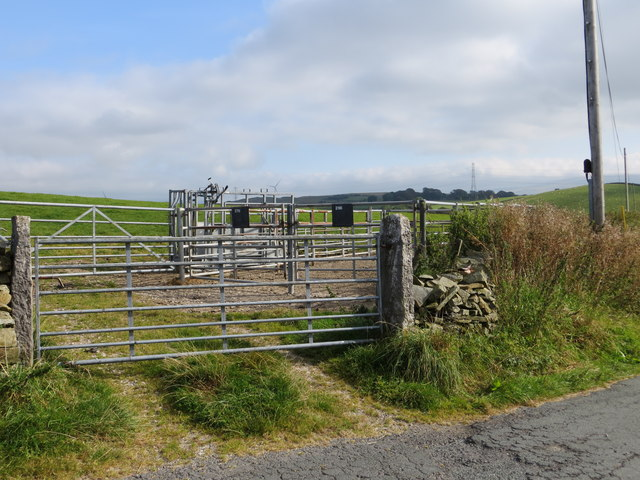 Road, Gateway and animal enclosures to the north of Warth Hill