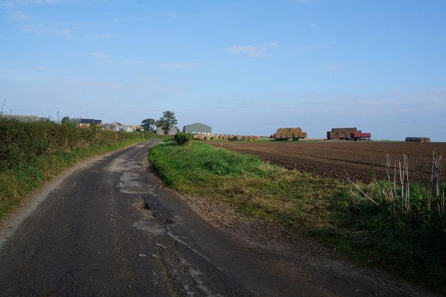 Starra Field Lane towards Low Farm