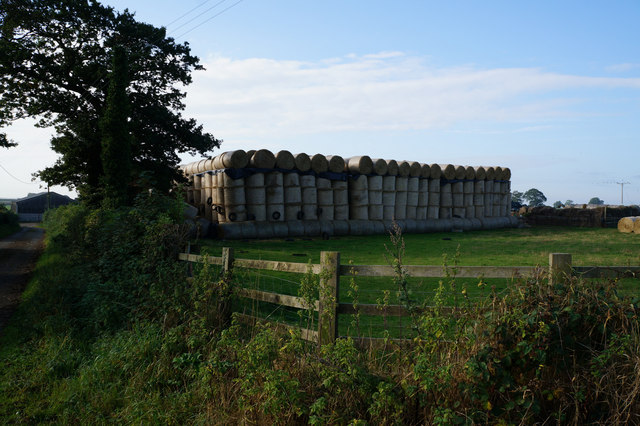 Bales of hay at Low Farm
