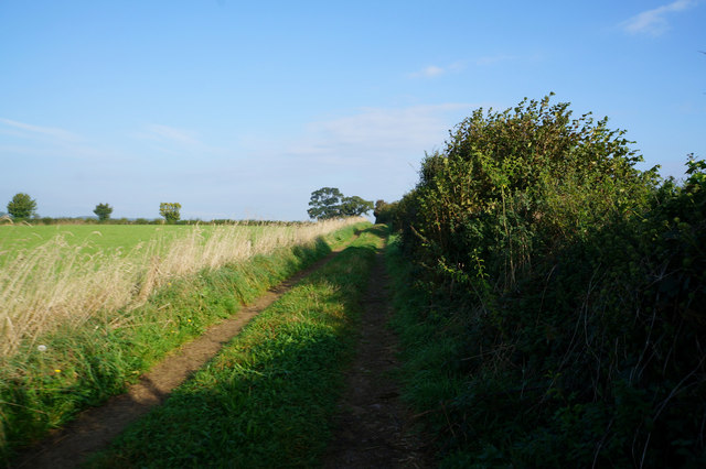 Bridleway towards Ox Close Lane