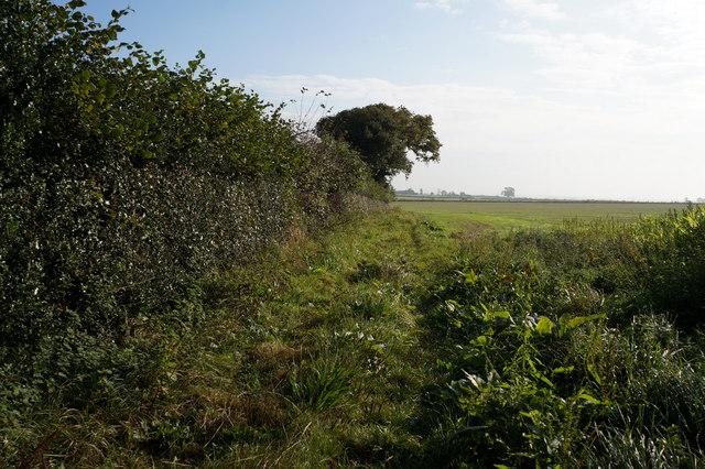 Bridleway towards Sleeper Field