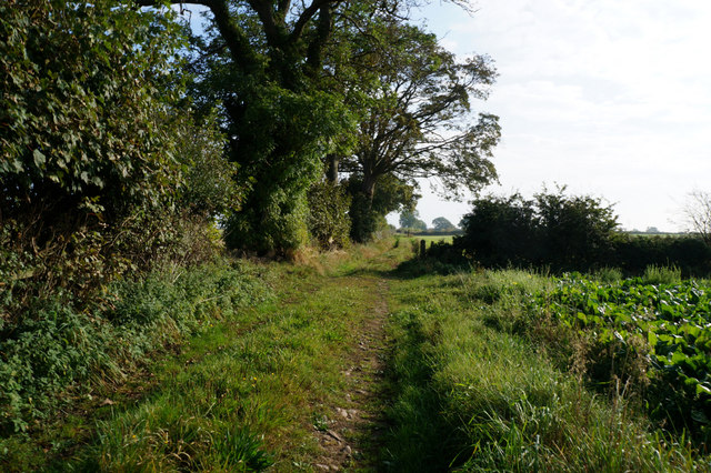 Footpath leading to Mill House