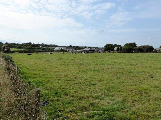 Field and farm near Tregadillett