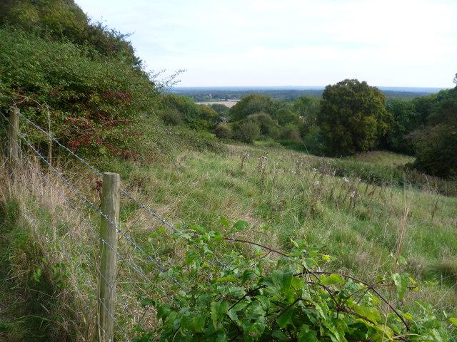 The Greensand Way at Shingle Hill