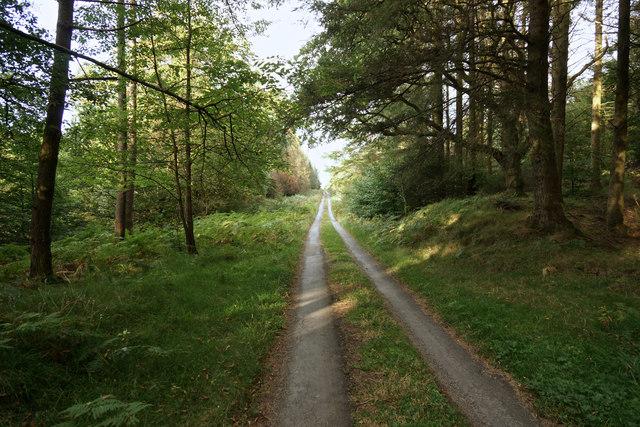 The track from Loch Eldrig