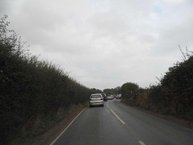 Rook Lane, Chaldon