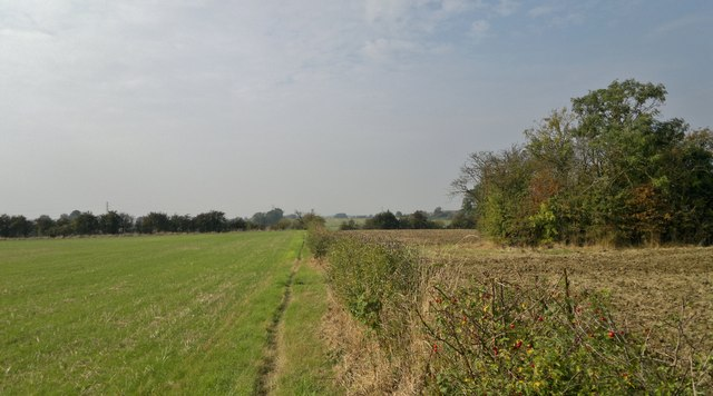 Fields south of Nettleham