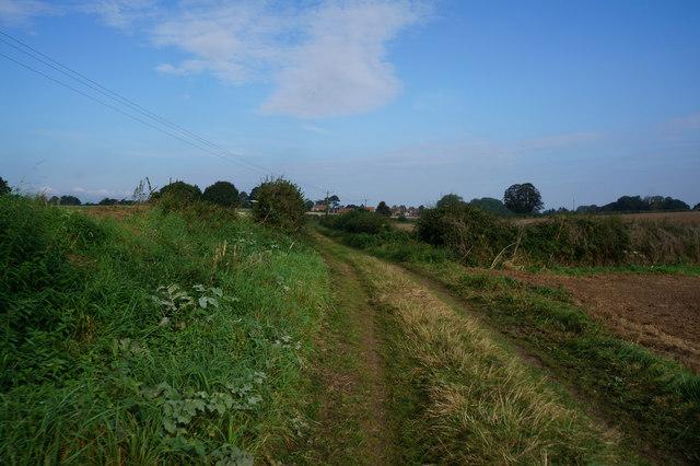 Elwick Lane towards Little Ouseburn