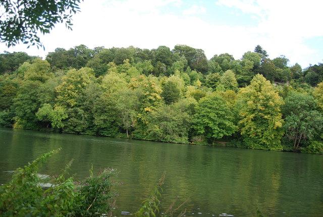 Woodlands, Cliveden Gardens